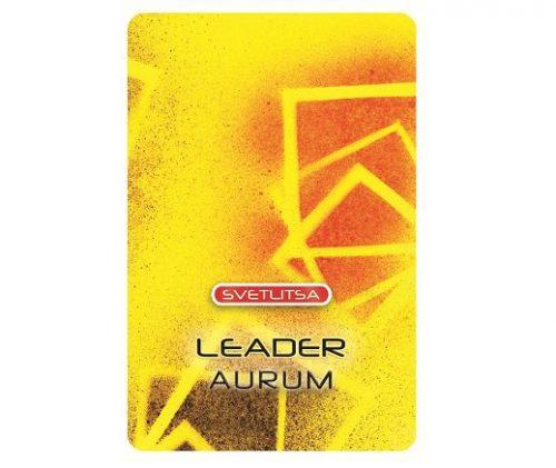 Светлица ЛИДЕР. Развитие лидерских качеств